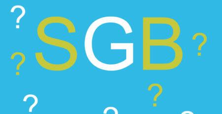 Skizze: SGB in Großbuchstaben mit Fragezeichen.